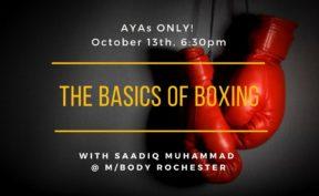the basics of boxing